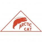 Поршни снегохода Arctic Cat