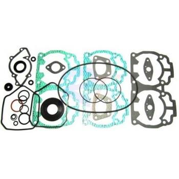 Комплект прокладок полный с сальниками Ski-Doo 600/500 420893070 / 420888584 / 12-5151 /711259