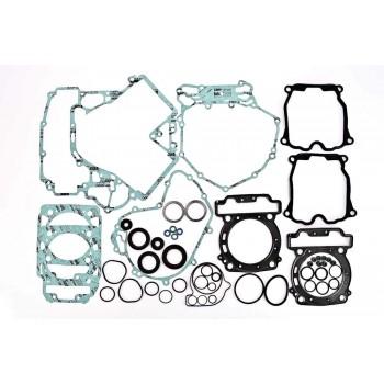 Полный комплект прокладок с сальниками Can-Am G1 Renegade/Outlander 800 06-11 420684138 /420684160 /564799 WINDEROSA 811956