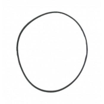Уплотнительное кольцо редуктора заднего Can-Am G2 2015+ 705502064