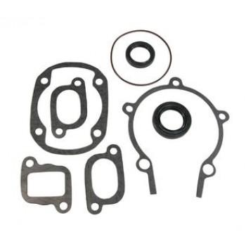 Полный комплект прокладок с сальниками Ski-Doo 300F FREESTYLE /TUNDRA 420992068, 420992069, 09-711195