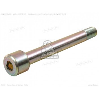 BOLT, SOCKET (10X48)