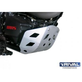 Защита двигателя IRBIS TTR 250R 2016- Rival 444.9801.1