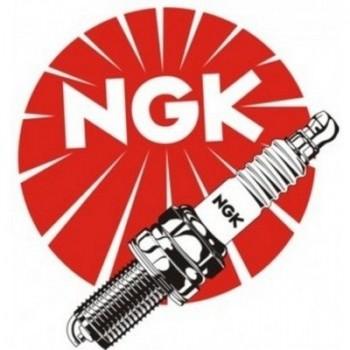 Свеча зажигания NGK DPR8EIX-9 /2202
