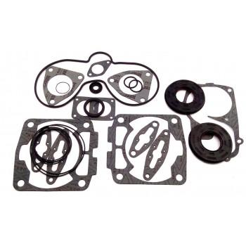 Полный комплект прокладок двигателя для снегохода Polaris 600 /TOURING /CLASSIC /RMK /SWITCHBACK /5411465 /5411411 /5811838 /5411394 /5811916 /5411359 /5410932 /09-711251